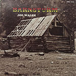 Joe Walsh - Barnstorm